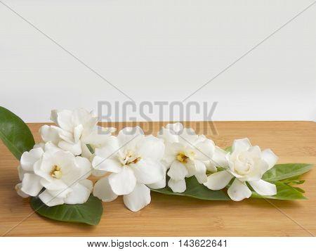 Beautiful white gardenia flower on wooden background