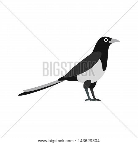 Magpie icon in flat style on a white background