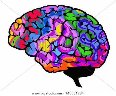 Brain vector illustration with colourful brainwaves isolated on a white background.