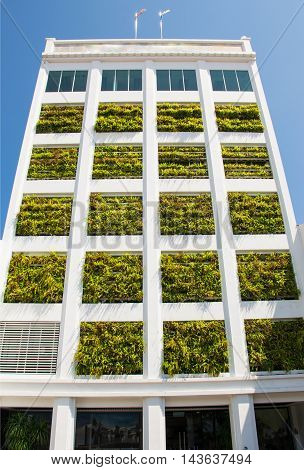 Photo of the Eco architecture. Building with hydroponic plants instead of windows. Ecology house concept
