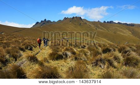 Hikers on their way to the El Puntas peaks near of the city of Quito / Ecuador