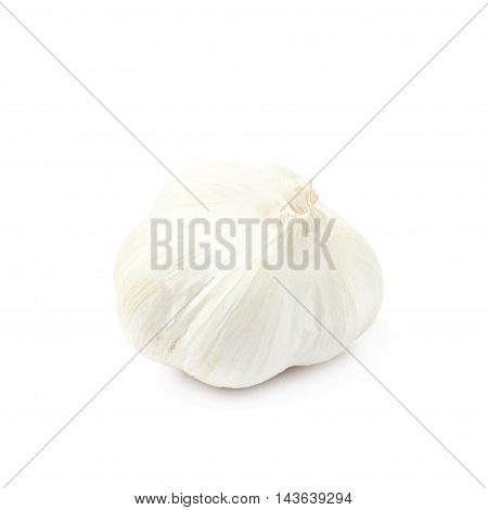 Single bulb of garlic isolated over the white background