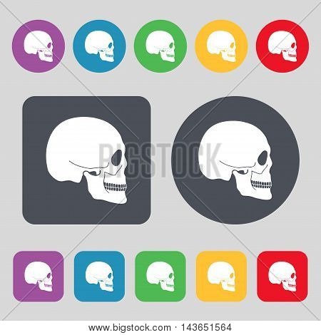 Skull Icon Sign. A Set Of 12 Colored Buttons. Flat Design. Vector