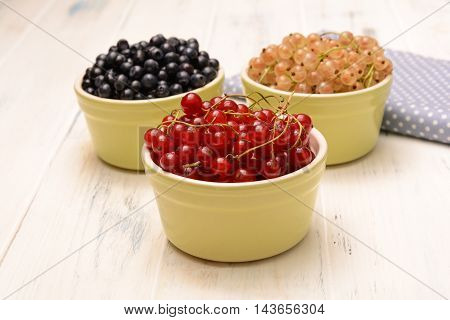 Red Currant And Other Berries
