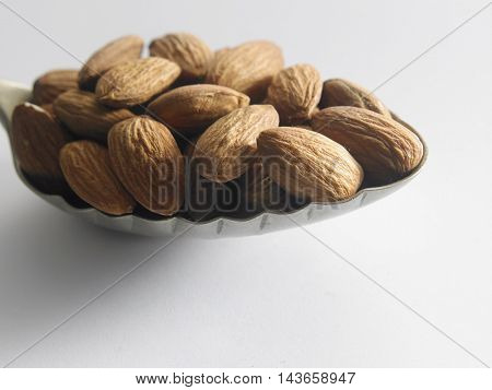 close up of almond nut in the spoon