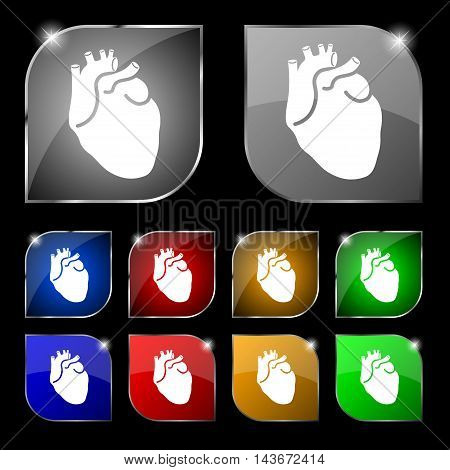 Human Heart Icon Sign. Set Of Ten Colorful Buttons With Glare. Vector