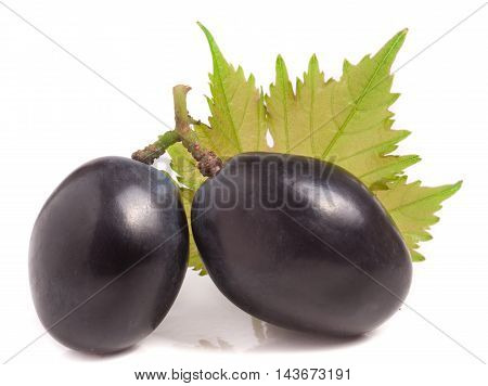 Two dark blue berries of grapes with leaf isolated on white background.