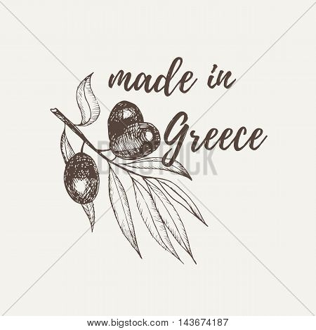 Vector Hand Drawn Sketch Of Olive Tree Branch. Made In Greece Lettering. Vector Illustration. Eps 10