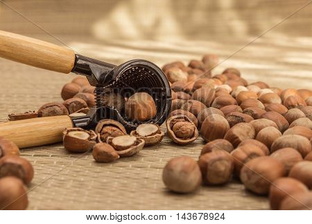 Nutcracker with wooden handle surrounded by hazelnuts on the table
