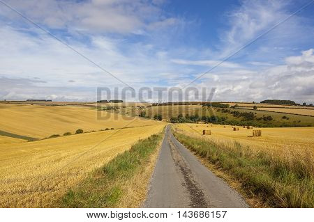 Harvest And Country Road