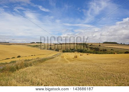 Harvest In The Yorkshire Wolds