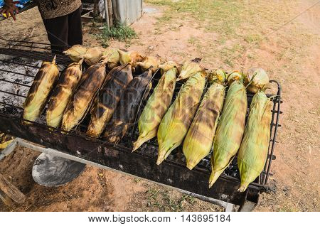 Closeup grilled corn vegetable food background on street eat for travel