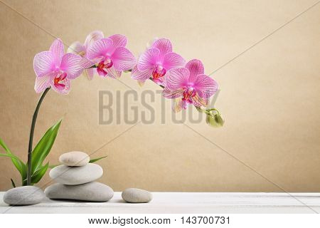 Orchid flowers and spa stones
