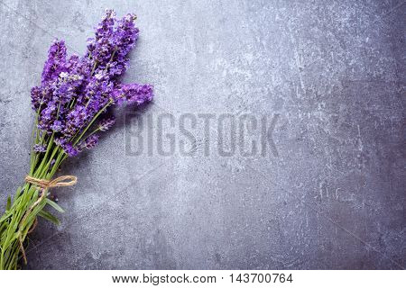lavender on stone background