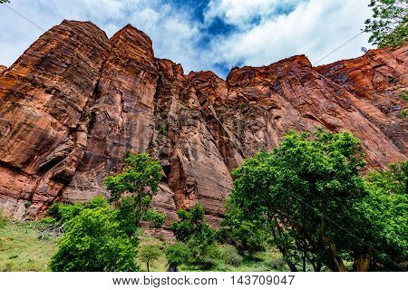 Colorful Sandstone Cliffs and Rock Formations in Zion National Park Utah.