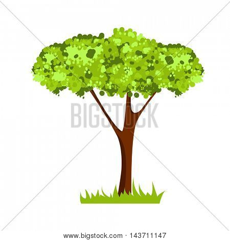 Vector picture with green tree. Isolated on white.