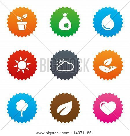 Garden sprout, leaf icons. Nature and weather signs. Sun, cloud and tree symbols. Stars label button with flat icons. Vector