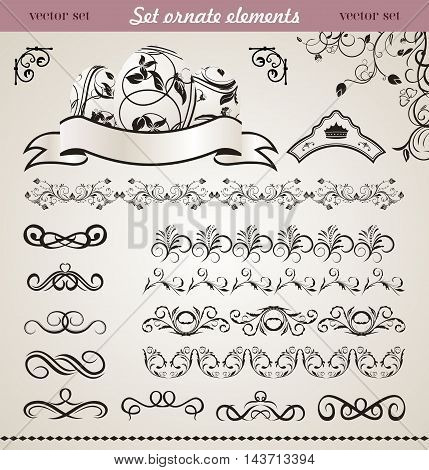 Illustration set floral ornate design elements - vector