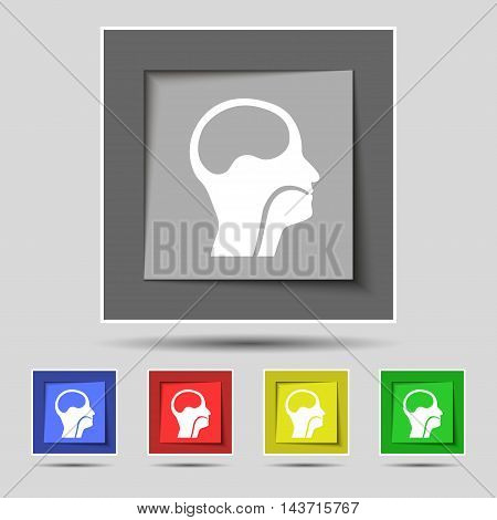 Larynx, Medical Doctors Otolaryngology Icon Sign On Original Five Colored Buttons. Vector