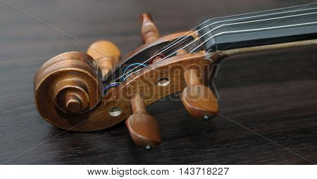 Detail Of Violin On Dark Background