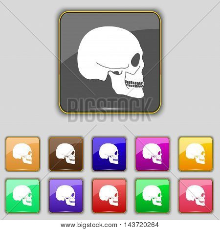 Skull Icon Sign. Set With Eleven Colored Buttons For Your Site. Vector