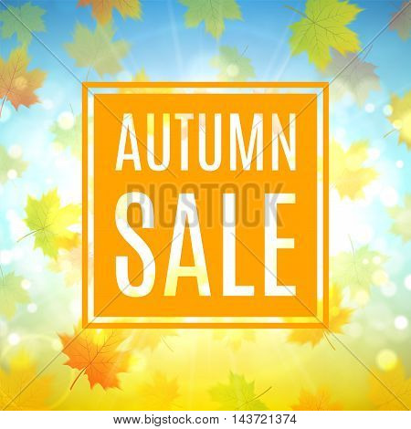 Autumn sale banner with maple leaves. Shiny backdrop with seasonal special offer. Beautiful background with the falling leaves. Vector illustration.