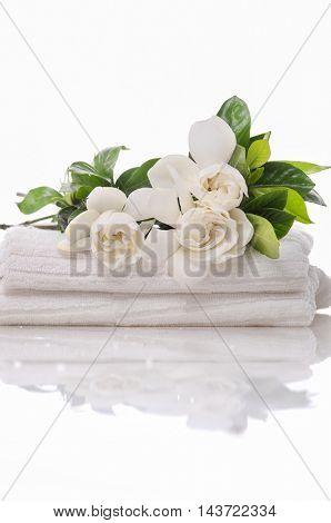 gardenia on towel â??white background