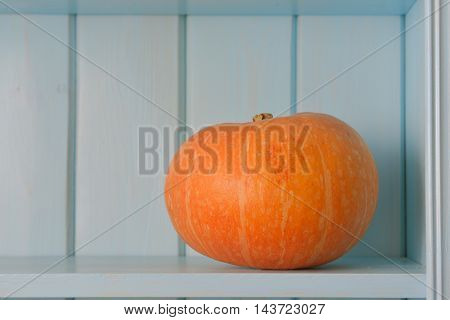 pumpkin on blue wooden board. beautiful picture