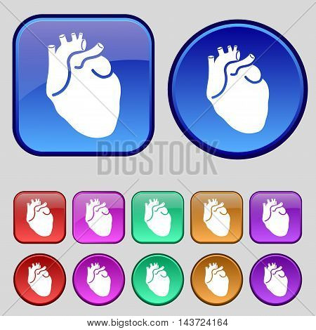 Human Heart Icon Sign. A Set Of Twelve Vintage Buttons For Your Design. Vector