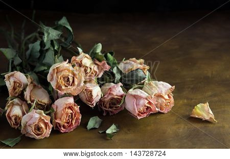Photo of dried pink roses on dark brown background