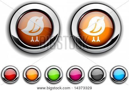 Bird realistic buttons. Vector illustration.