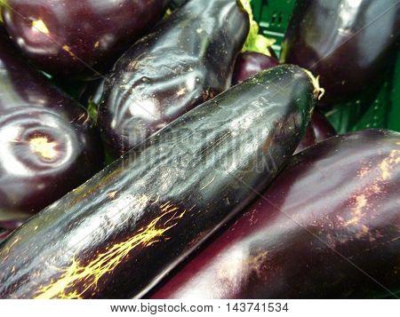Big Fresh Dark Eggplant In The Market