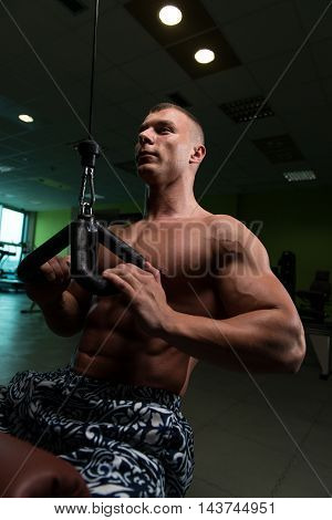 Young Man Exercising Back In The Gym