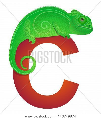 Chameleon for letter C in children ABC