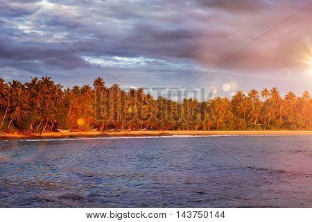 Ocean beach on sunset. Mirissa, Sri Lanka
