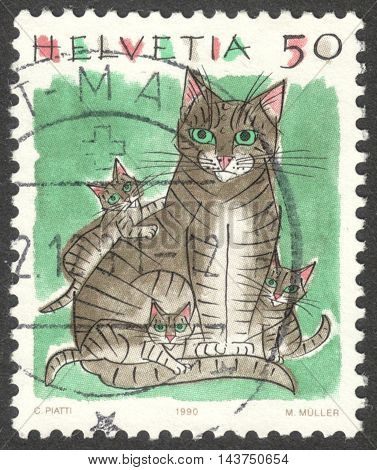 MOSCOW RUSSIA - CIRCA JULY 2016: a post stamp printed in SWITZERLAND shows a domestic cat (Felis silvestris catus) the series
