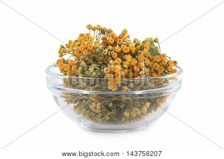tansy in glasswares on a white background