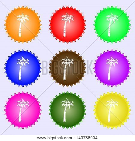 Palm Icon Sign. Big Set Of Colorful, Diverse, High-quality Buttons. Vector
