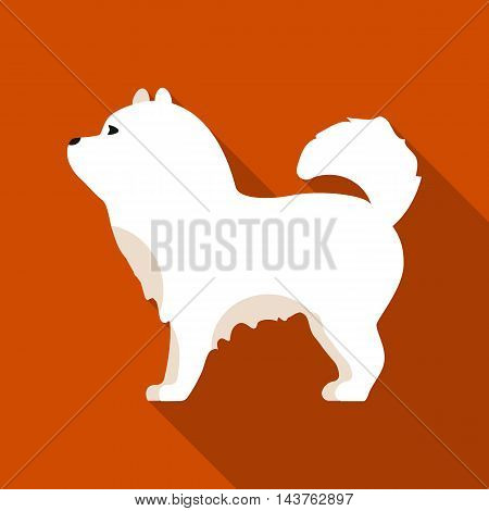 Chow-chow vector illustration icon in flat design