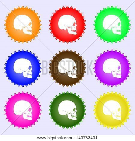Skull Icon Sign. Big Set Of Colorful, Diverse, High-quality Buttons. Vector
