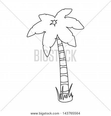 Palm vector illustration icon in line design