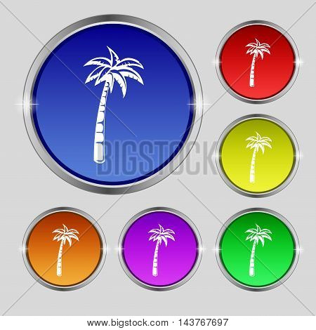 Palm Icon Sign. Round Symbol On Bright Colourful Buttons. Vector