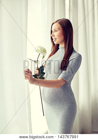 pregnancy, motherhood, people, holidays and expectation concept - happy pregnant woman with white rose flower at home