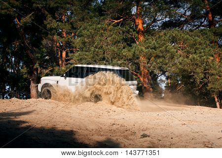 Saratov, Russia - September 01, 2014: Car Land Rover Range Rover drive at sand off-road near pine forest at daytime