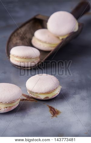 Traditional French Sweets. Pink Macaroon On A Metal Tray. Gray B