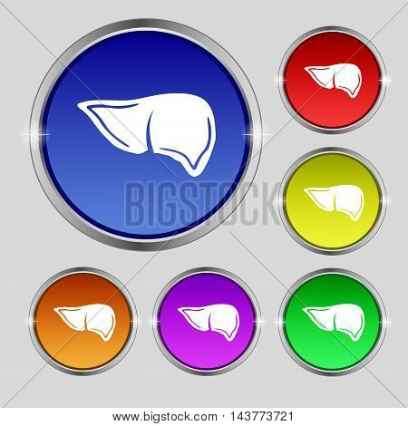 Liver Icon Sign. Round Symbol On Bright Colourful Buttons. Vector