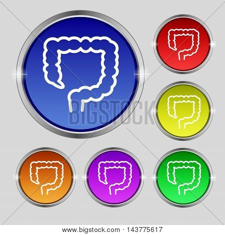 Large Intestine Icon Sign. Round Symbol On Bright Colourful Buttons. Vector
