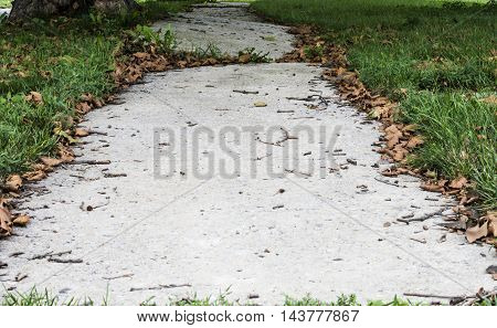 Uneven sidewalk with grass and leaves in a small town