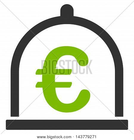 Euro Storage icon. Vector style is bicolor flat iconic symbol with rounded angles, eco green and gray colors, white background.