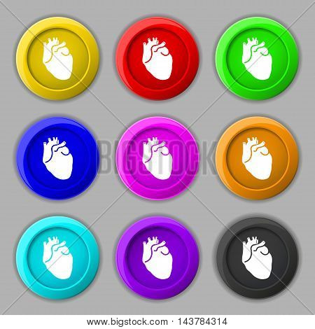 Human Heart Icon Sign. Symbol On Nine Round Colourful Buttons. Vector